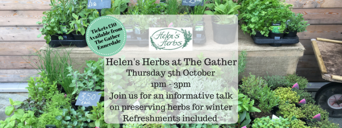 Helen's Herbs at The Gather (2)